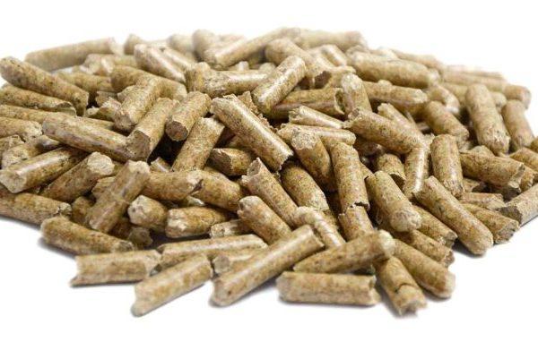 granules-de-bois1-768x382
